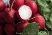 Obst und Gemüse von innen - Fotografin Jutta R. Buchwald