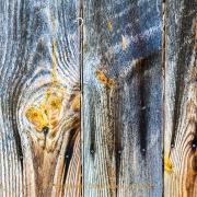 Monatsthemen Holzoberflächen - Fotografin Jutta R. Buchwald
