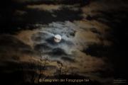 Monatsthema Nachtaufnahmen - Fotograf Clemens Schnitzler