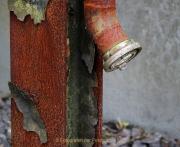 Rost - Fotografin Anne Jeuk