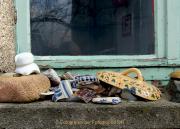 Monatsthema Vergänglich - Fotografin Anne Jeuk
