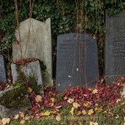 Monatsthema Vergänglich - Fotografin Jutta R. Buchwald