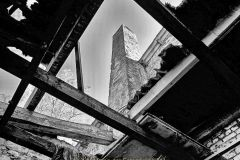 Monatsthema Vergänglich - Fotograf Henry Mann