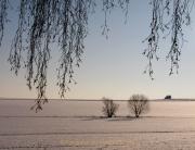 Winterlandschaften - Fotografin Anne Jeuk