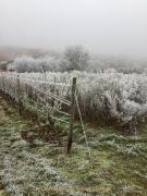 Winterlandschaften - Fotograf Clemens Schnitzler